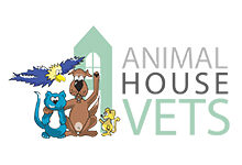 Animal House Vets – Downend Vets
