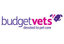 Budget Vets – Risca