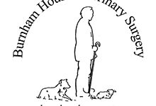 Burnham House Vets – Whitfield