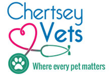 Chertsey Vets