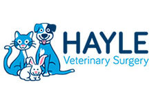 Hayle Veterinary Surgery (Duchy)