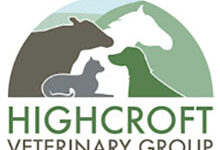 Highcroft Vet Group – Hailsham