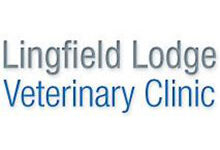 Lingfield Lodge Veterinary Clinic
