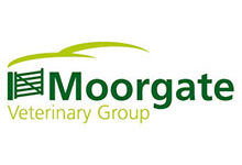 Moorgate Veterinary Group – Christow