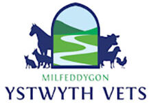 Ystwyth Veterinary Practice